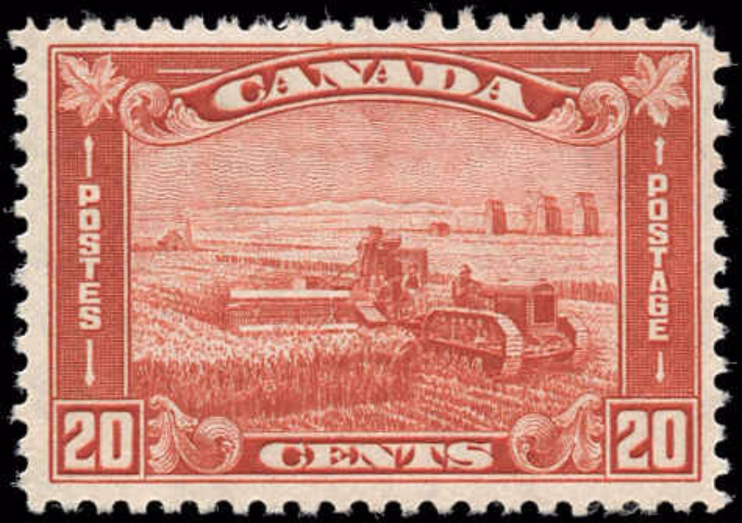 Canada #175, Arch/Leaf Issue, F-VF, MNH