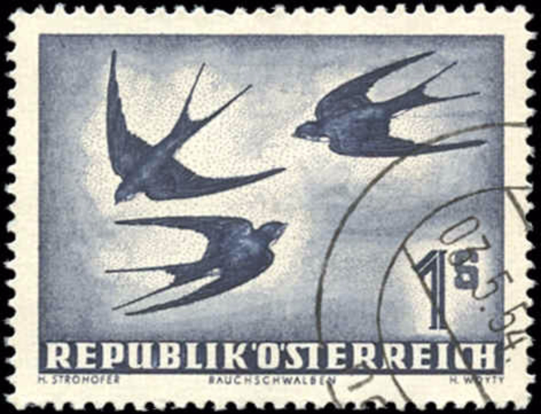Austria, #C55, VF, Used