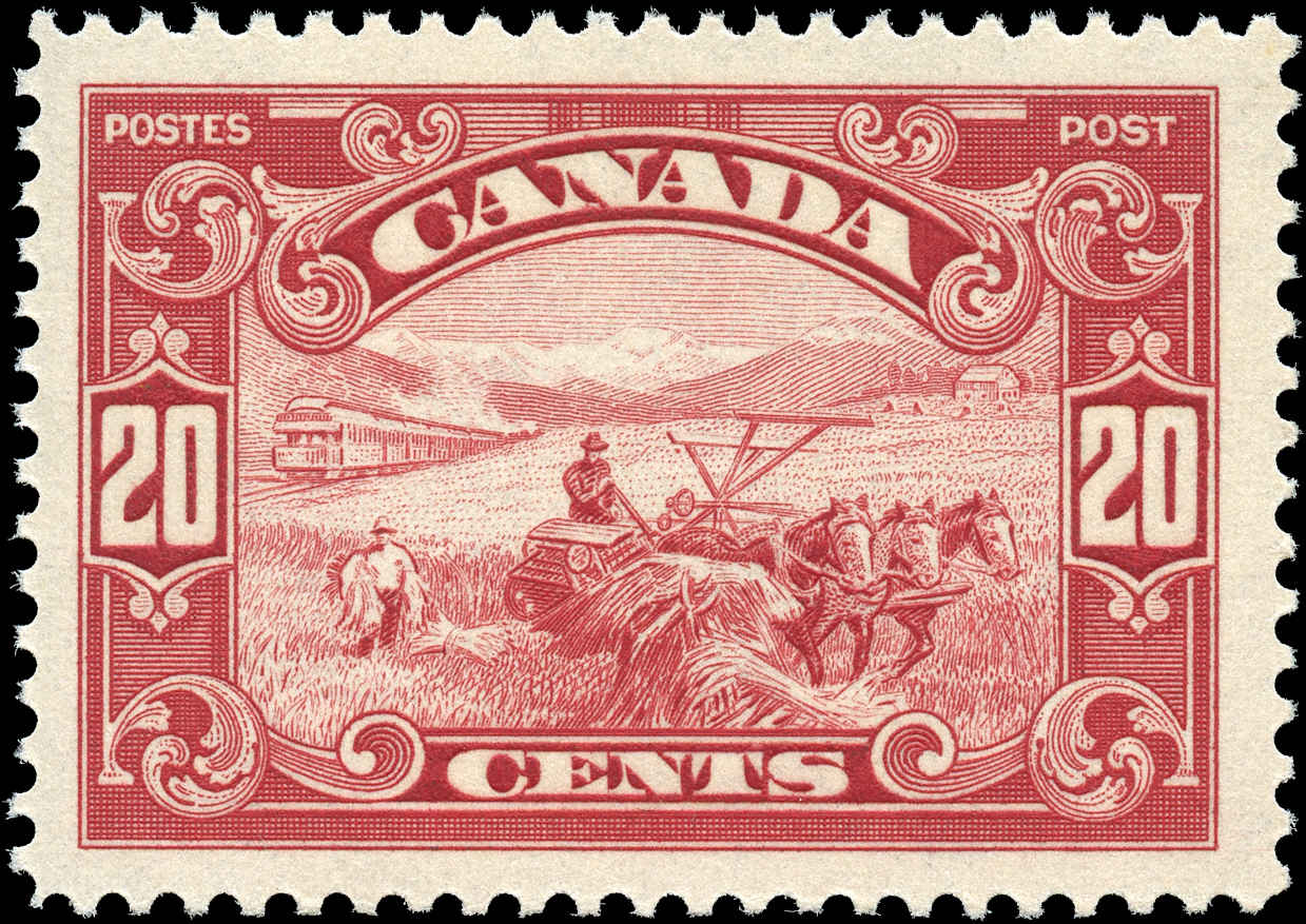 Canada #157, Scroll Issue, VF, MNH