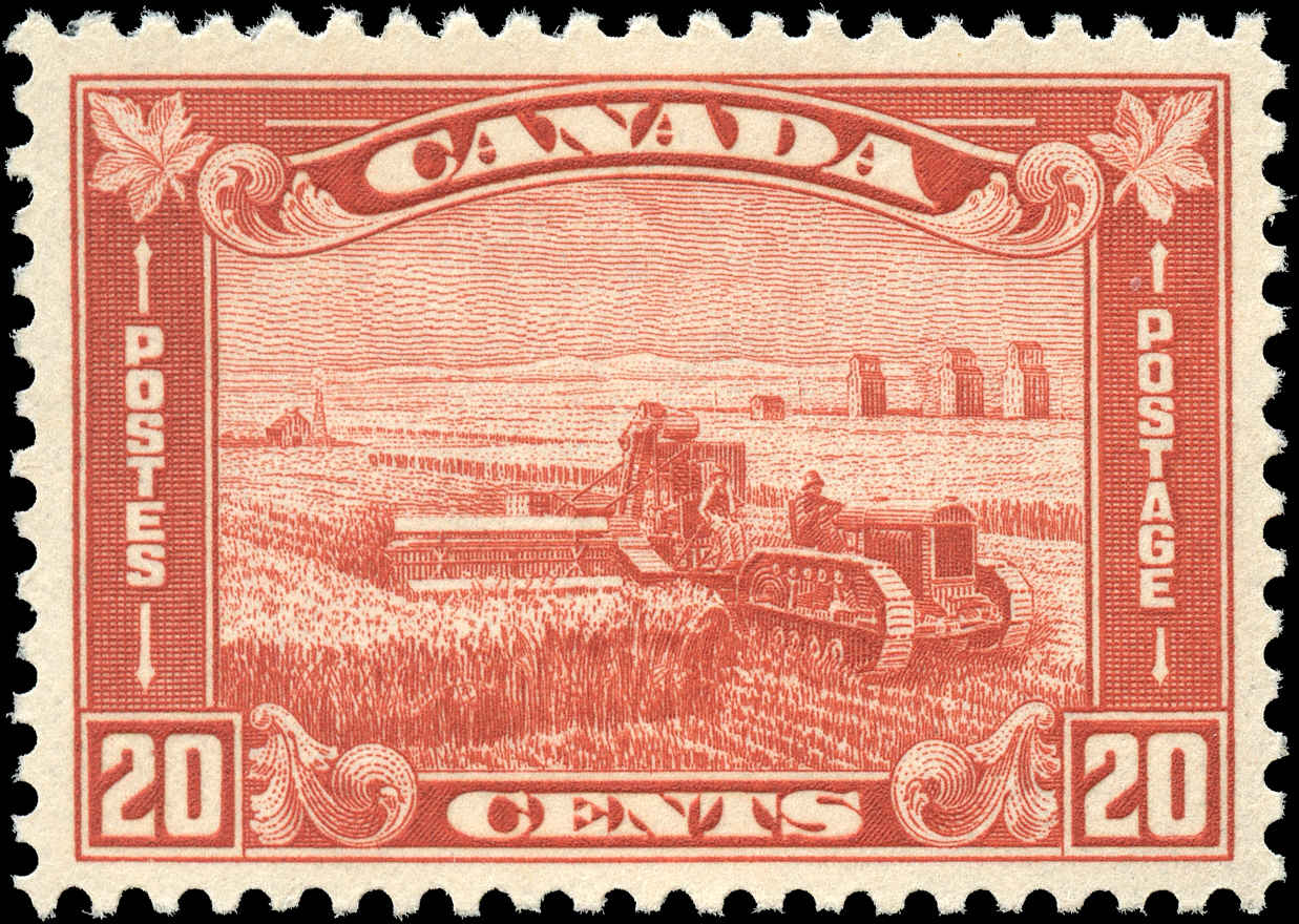 Canada #175, Arch/Leaf Issue, VF, MNH