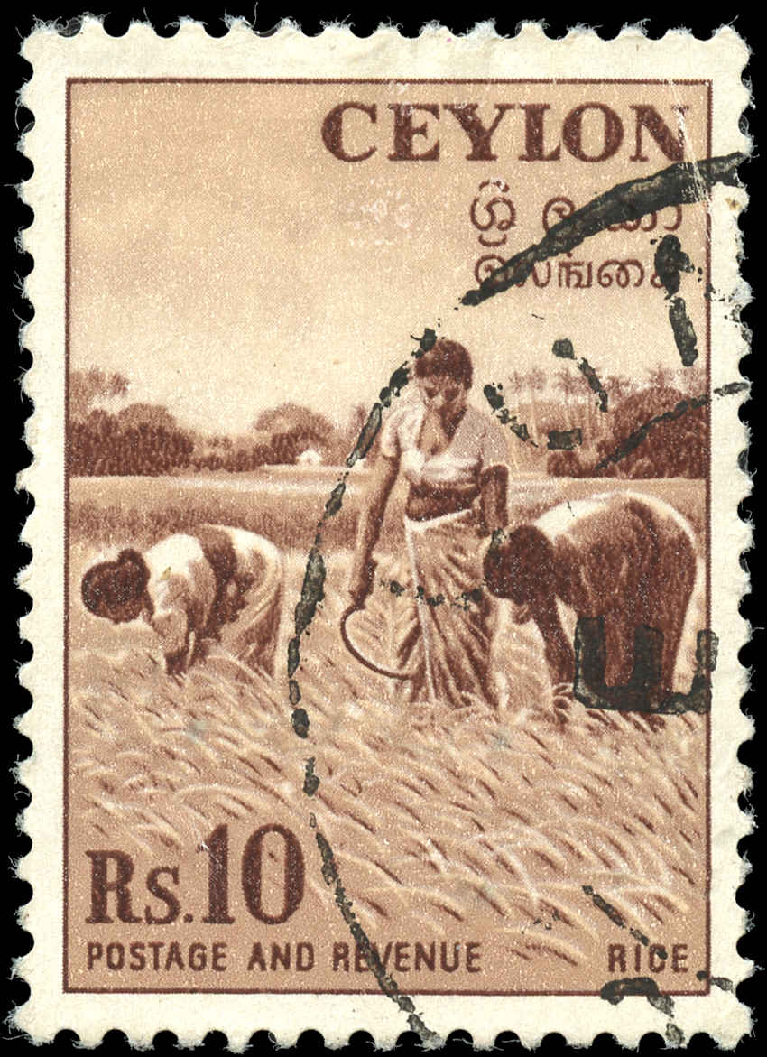 Ceylon, #328, VF, Used